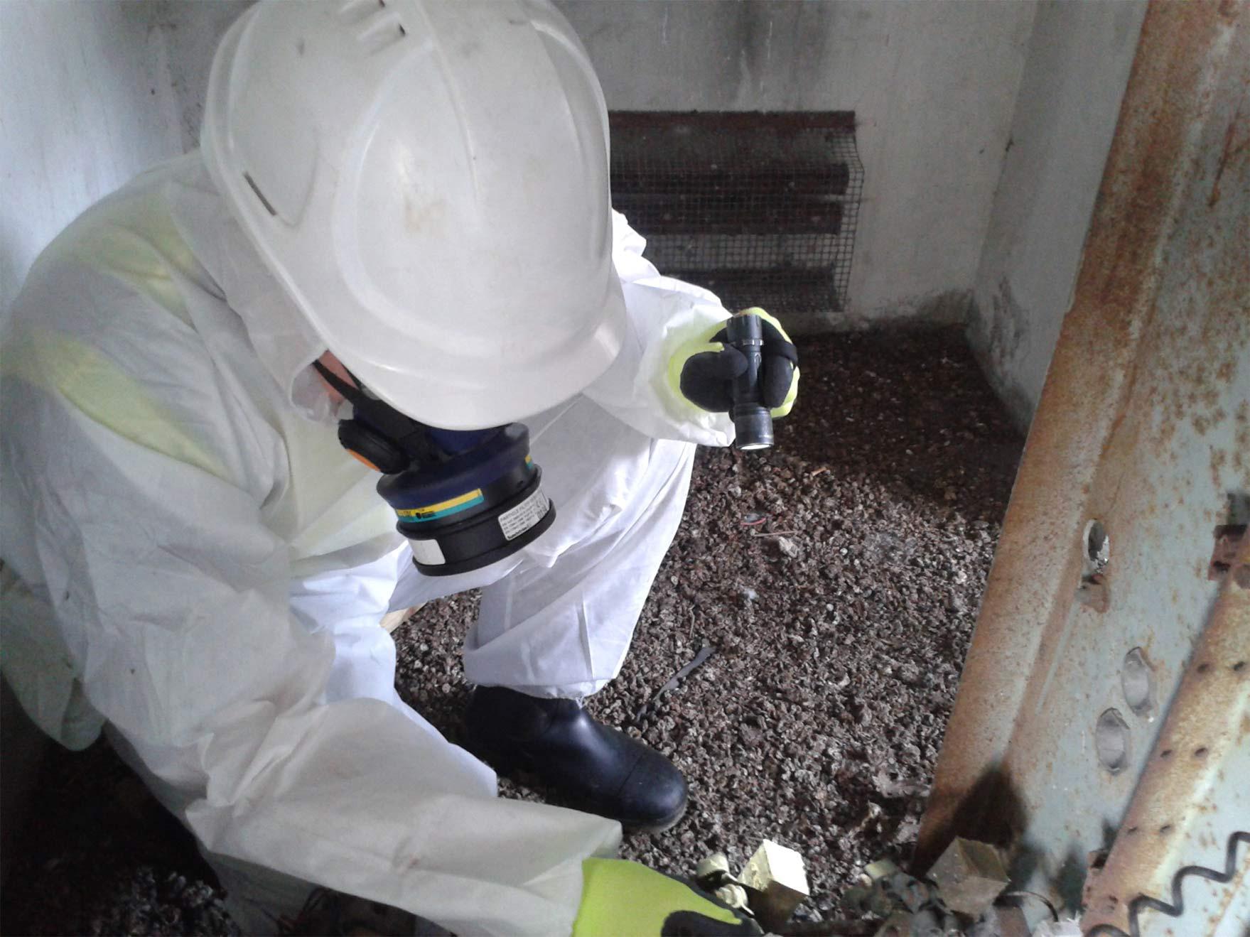 21+ How often asbestos testing